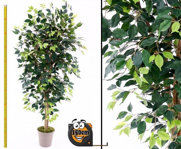 Künstlicher Ficus Elegance 150cm mit 1100 Blättern aus Textilfaser Naturstämmen