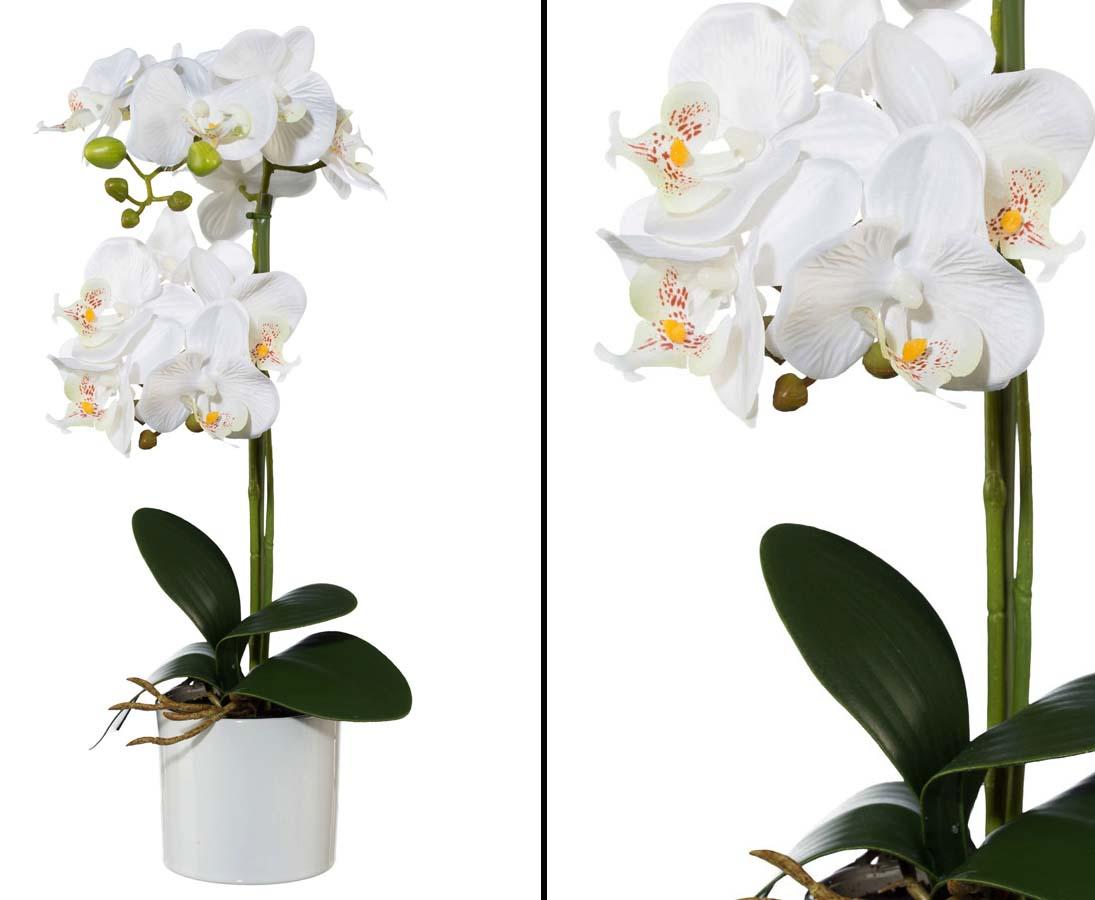 k nstliche orchideen kunstorchideen gf nstig online kaufen. Black Bedroom Furniture Sets. Home Design Ideas