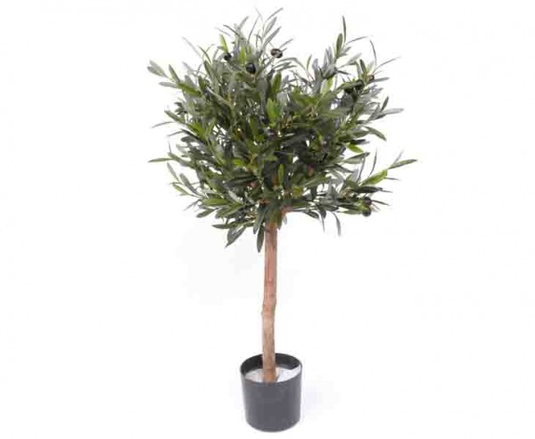 Olivenbäumchen 75cm, 1040 Blätter, 24 Oliven