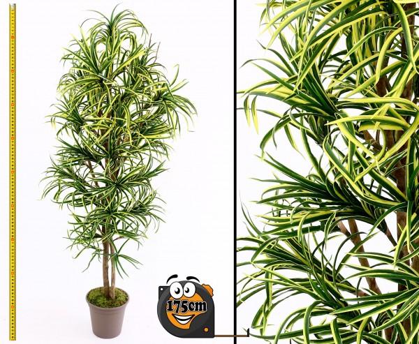 Yucca Kunstpalme Mini mit 672 Blätter grün gelb 175cm hoch mit Naturstämme
