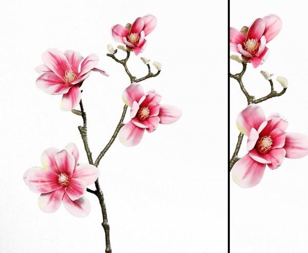 Magnolia Zweig mit 4 Blüten rosee farbig, 7 Knospen, Länge 82cm