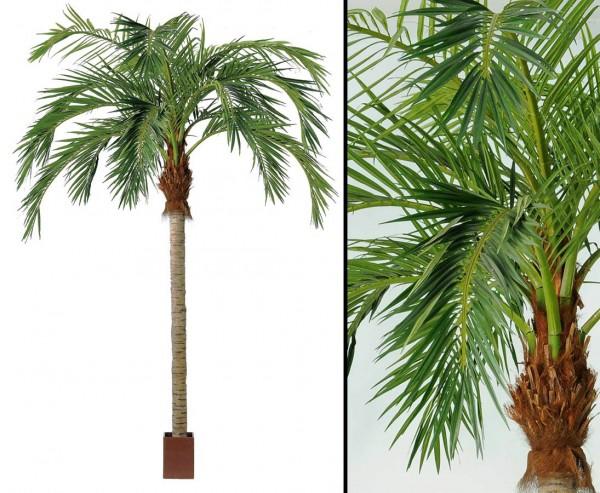 Kunstpalme Cocos 420cm mit langen Textilfaser Wedel mit Topf