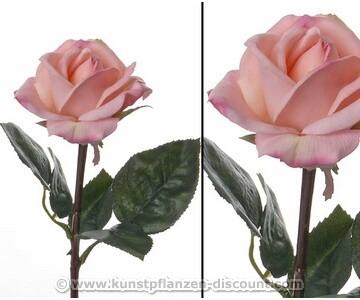Rosen Kunstblume real touch, mit heller rosa farbiger Blüte, 35cm