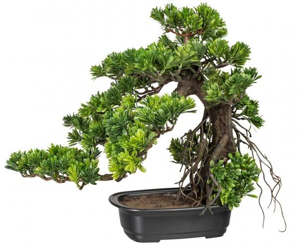 Kunstpflanze Bonsai Podocarpus im Kunststofftopf mit einer Höhe von 40cm