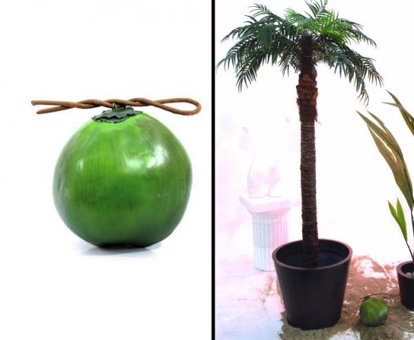 Cocosnuss aus Kunststoff mit einem Durch. von ca. 16cm