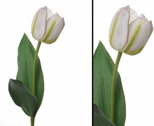 """Künstliche Tulpe """"Bonny"""" mit real touch Effekt, weiß-grüner Blüte"""