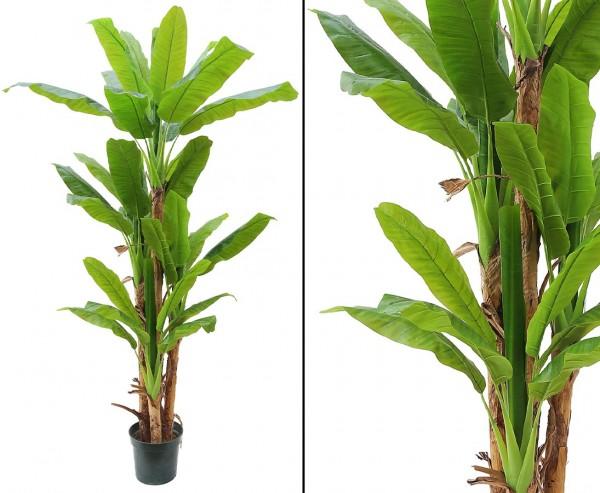 Bananen Kunstbaum mit 34 Blätter aus PEVA Höhe ca. 250cm, 4stämmig