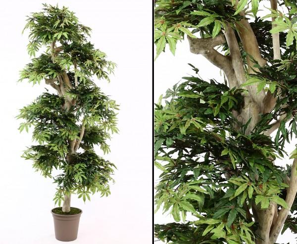Künstlicher Ahorn Baum 185cm mit Naturstamm 1080 Blätter
