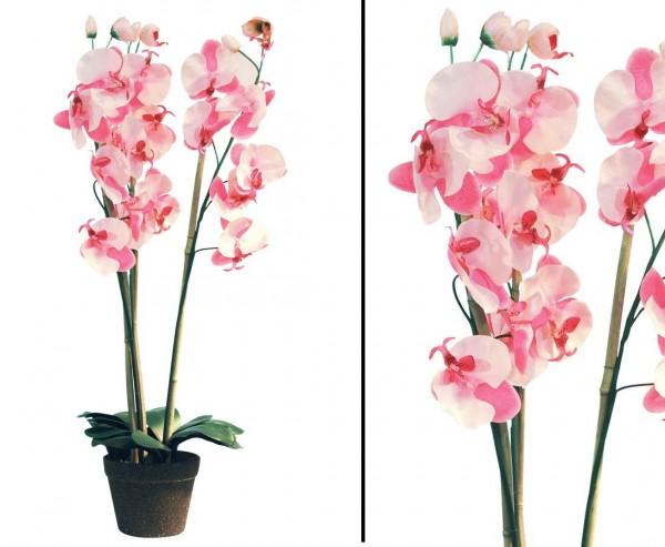 Orchidee, Kunstblume günstig mit zart rosa farbigen Blüten, 80cm
