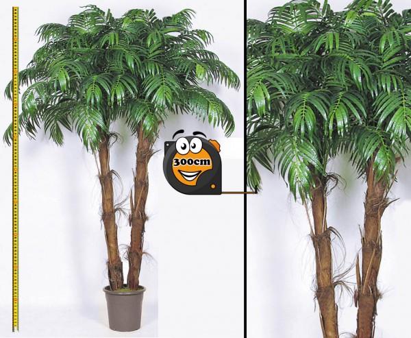 Kunstpalme Areca mit 2 Stämmen umhüllt mit echtem Palmfaser Material Höhe 300cm