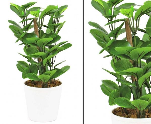 Grünblatt Kunstpflanze im Topf mit 72 Blättern Höhe 30cm