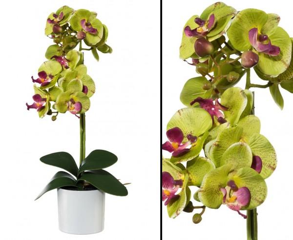 Orchideen Kunstblume mit 2 grün farbigen Blütenköpfen mit 45cm im Keramiktopf
