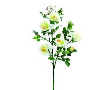 Rosenzweig, weiß, 113 Blätter und 8 Blüten, 90cm