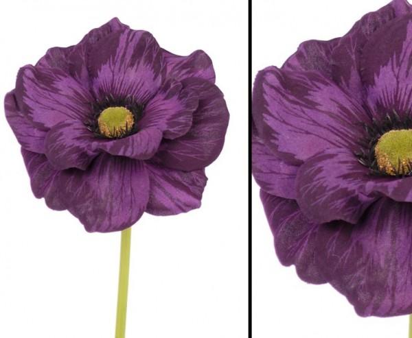 """Anemonen Windröschen """"Nemo"""", Länge 21cm, violett"""