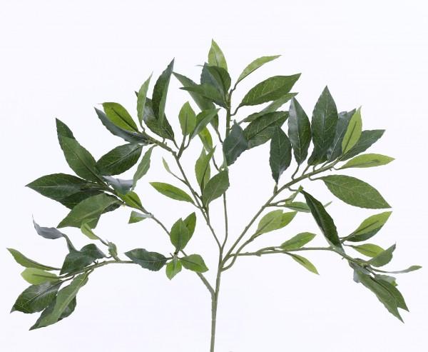 Kunstpflanzen Lorbeerblattzweig mit 74 Blätter UV-sicher 48cm