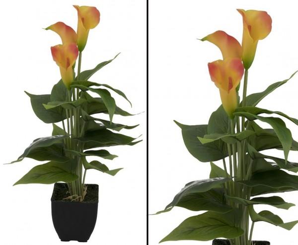 Kunstpflanzen Calla Busch mit gelb orangen Blüten im Topf 43cm