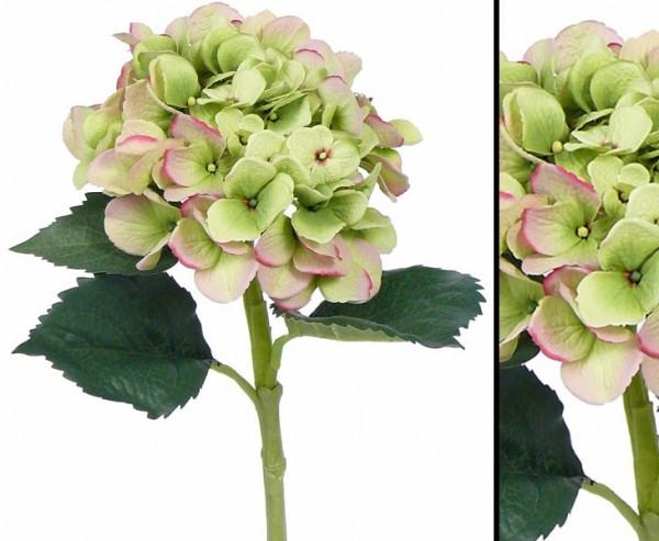 Künstliche Hortensie mit grünlich roter Blüte 15cm, 48cm