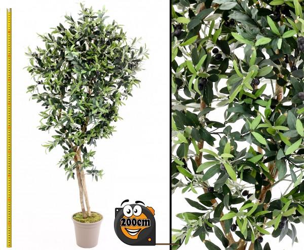 Oliven Kunstbaum 200cm mit Naturstämme im Zementtopf