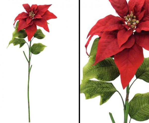 Weihnachtsstern rot, Länge 72cm