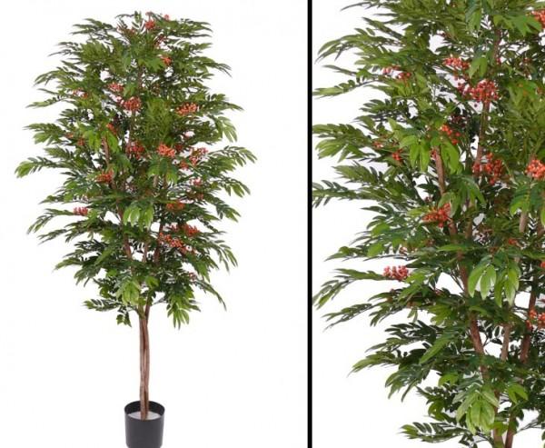 Eberesche bzw. Vogelbeerbaum mit Echtholz Stamm Höhe ca. 210cm