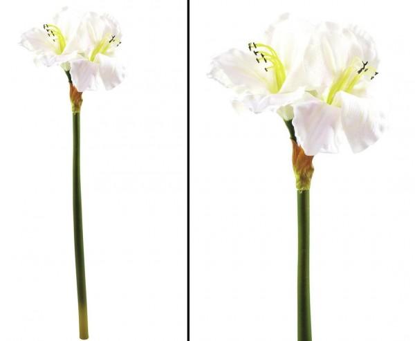 Amaryllis Kunstblume 62cm mit 2 weißen Blütenköpfen