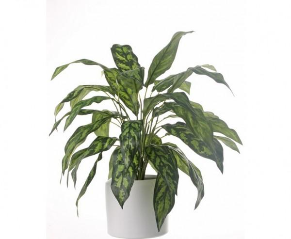 Künstliche Aglaonema mit grün gefleckte Blätter Höhe 71cm