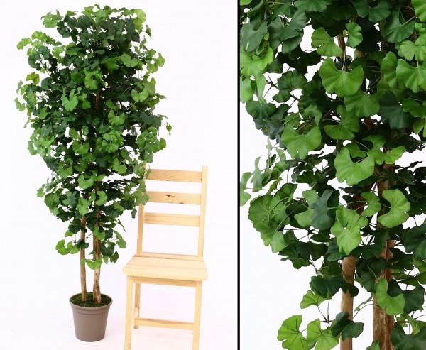 Künstlicher Baum Ginkgo 150cm mit 572 Blätter und Naturstämmen