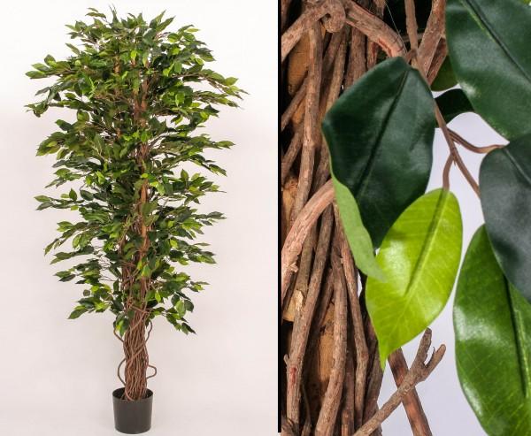 Ficus Benjamini Kunstbaum mit 210cm 1920 Blätter
