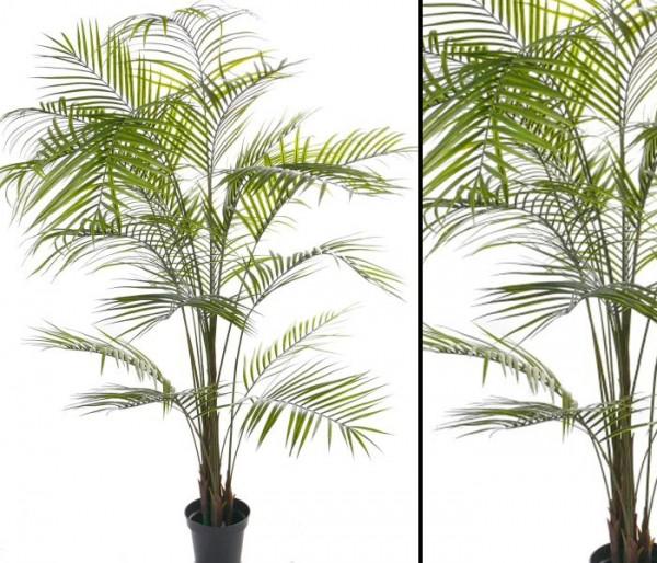 Künstliche Arekapalme 20 UV sichere Palmblätter Höhe ca. 225cm