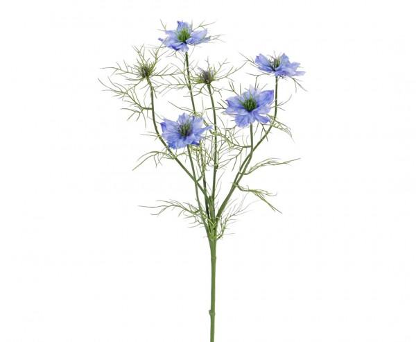 """Blume Nigella """"Persian Jewel"""" mit 4 blau-violette Blüten Länge ca. 65cm"""