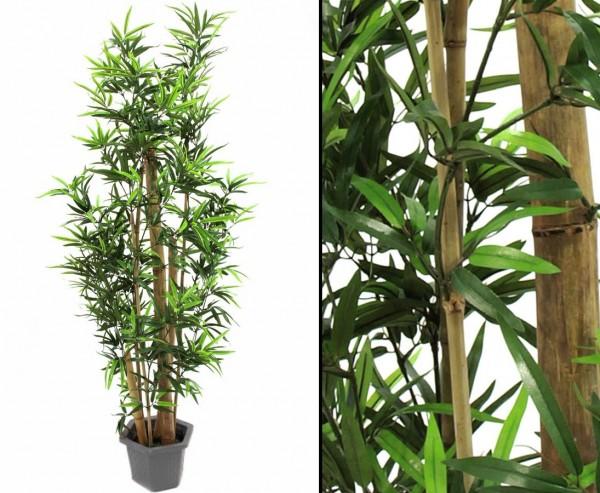 Bambus, dicke Naturstämme mit 1472 Textilblätter, Höhe ca. 225cm