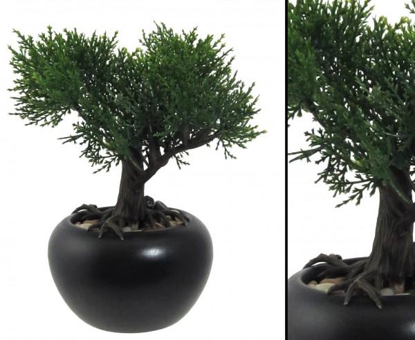 Kunstpflanze Mini Bonsai Zeder mit ca. 19cm im Keramiktopf