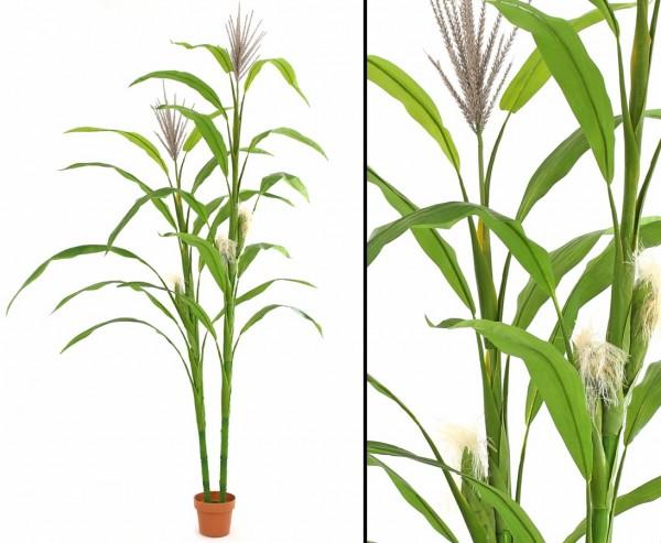 Maispflanze als Kunststoffpflanze mit 21 Blätter 4 Blüten und 3 Früchte, Höhe ca.260cm