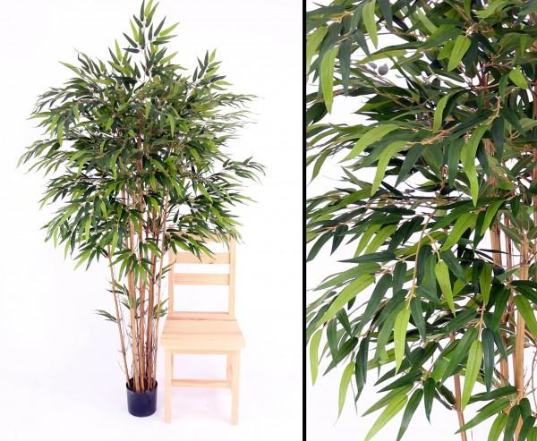 Bambus mehrstämmig mit ca.1840 Blätter, Höhe 180cm