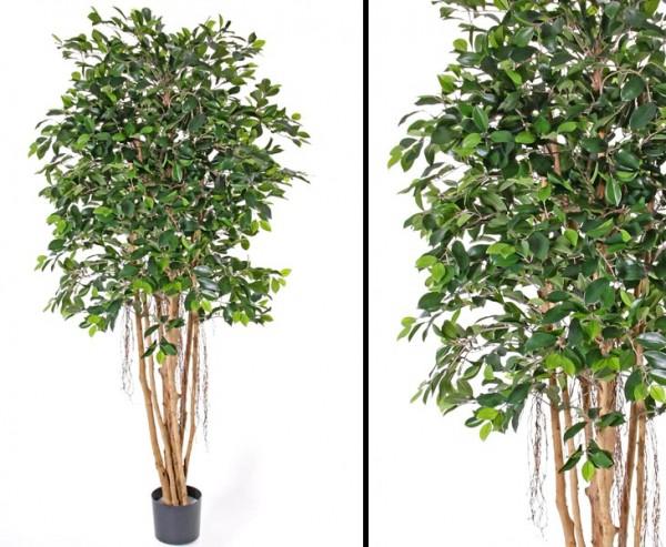 Künstlicher Ficus Microcarpa mit ca. 1440 Blättern Höhe 150cm
