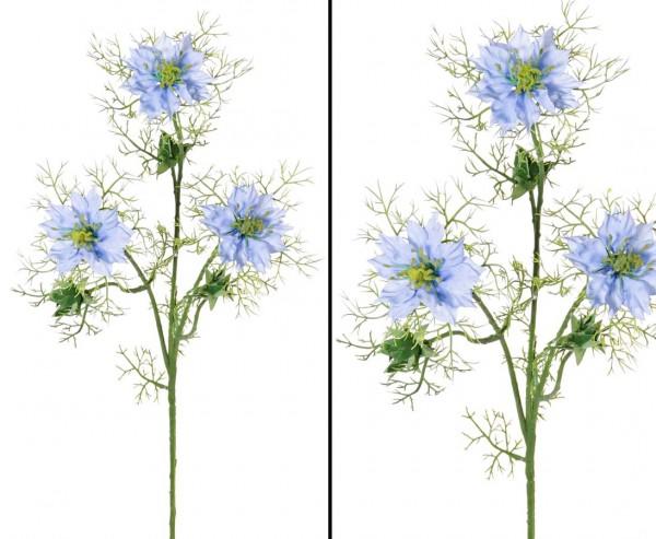 Blume Nigella - Persian Jewel, hellblau, Länge ca. 61cm
