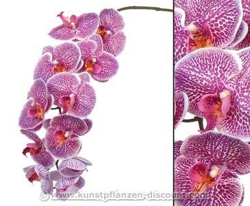 Orchideen Kunstblume mit 11 violetten Blüten, Länge 102cm