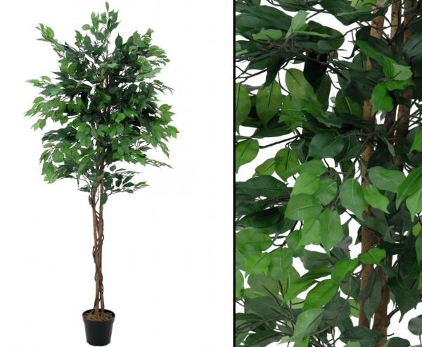 Kunst Baum Ficus Benjamini mit Multistamm Höhe 210cm