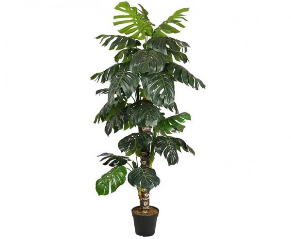 Monstera deliciosa Kunstbaum 160cm mit Topf und 34 Blätter