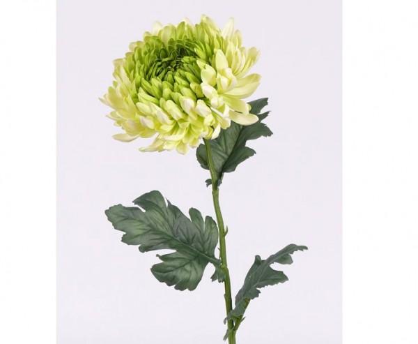 Chrysantheme Kunstblume mit weiß, gelber und grünlicher Blüte, Länge 75cm