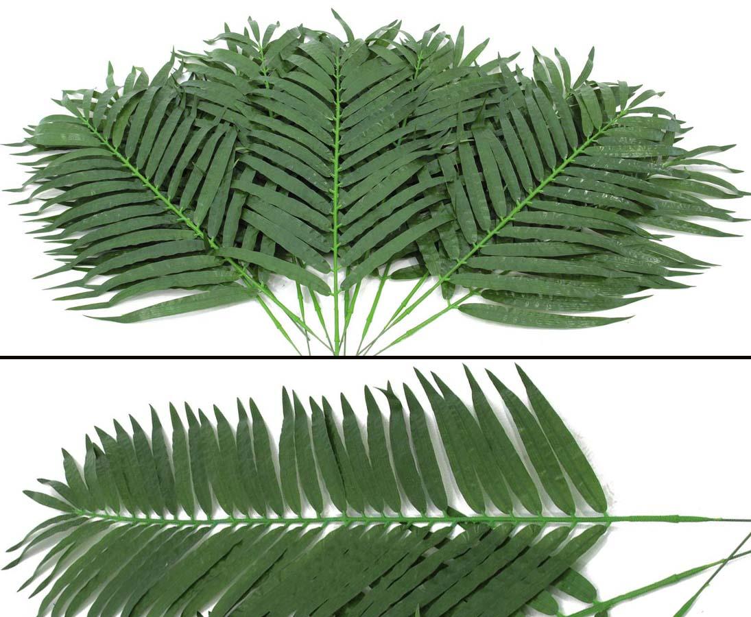 palmwedel palmbl tter palmblatt palmenblattg nstig bestellen. Black Bedroom Furniture Sets. Home Design Ideas