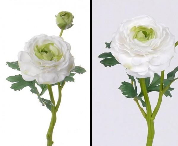Ranunkel Kunstblume mit weiß-grünen Blüten, Länge 35cm