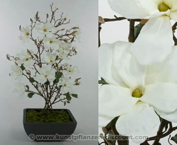 "Magnoliengesteck ""Korea"" mit Topf, Höhe 109cm, weiß"