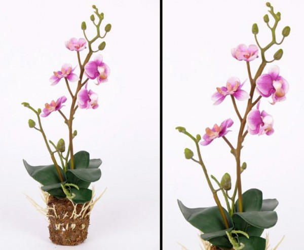 Orchidee künstlich mit 5 violett farbigen Blüten Höhe ca. 32cm