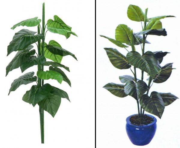 Caladiumpflanze, Kunstpflanze mit 3 Stämmen, Höhe ca. 90cm