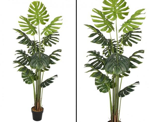 Splitphilodendron Monstera Kunstpflanze 180cm mit 18 Blättern