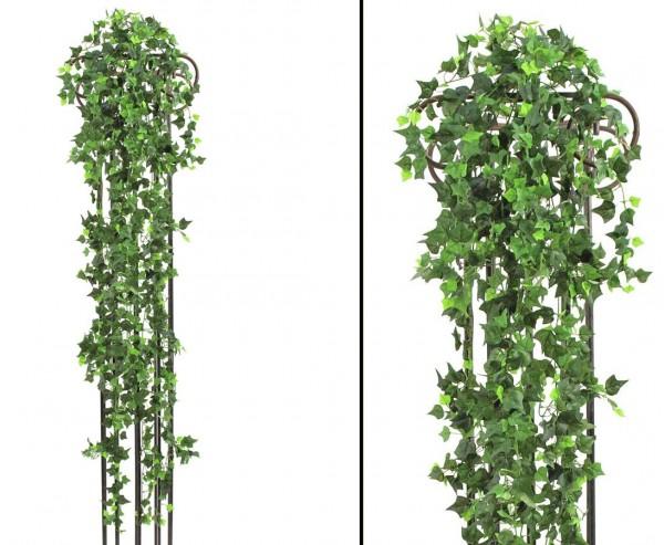 Efeubuschranke, classic Kletterpflanze, 1365 Blätter, Länge 160cm