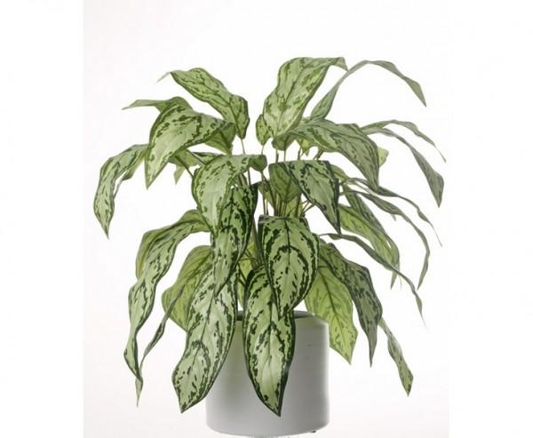 Kunstpflanze Aglaonema mit 36 hellgrüne Blätter, Höhe ca. 71cm