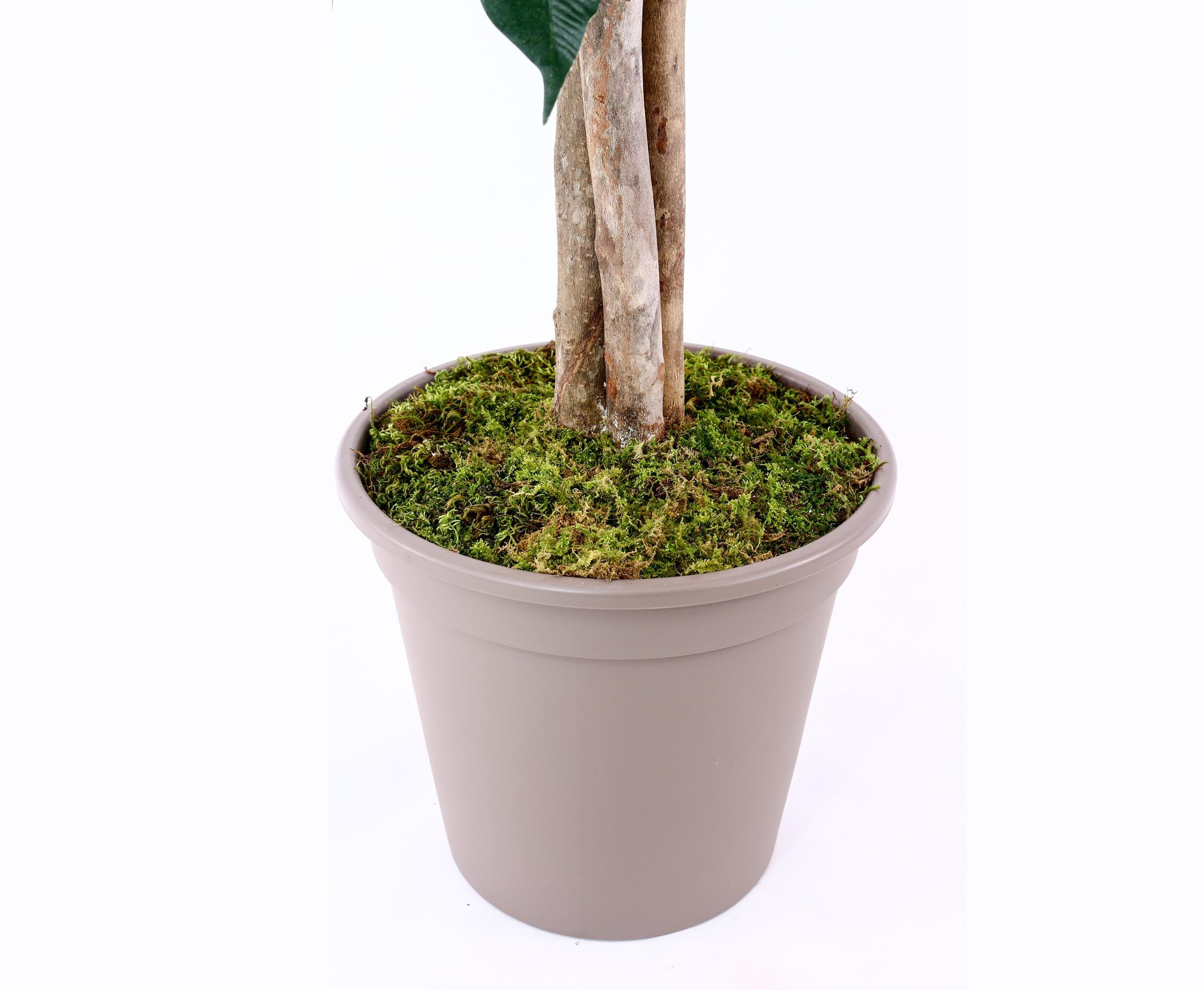 Kunstpflanze Kunstbaum Zitronenbaum 120 cm Dekobaum