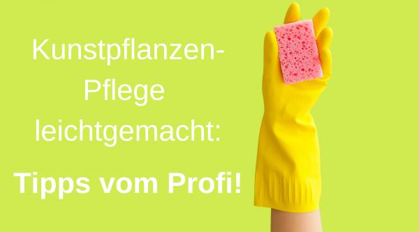 Kunstpflanzen-Pflege-leichtgemacht_-Tipps-vom-ProfiOMFula2AXMkCsLABf1ZCoqsJnC
